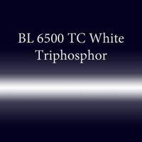 Трубка неоновая с люминофором BL 6500 TC Wfeaturede Triphosphor